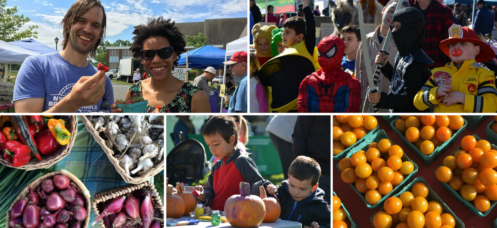 Harvest Festival, Downtown Pittsfield, MA